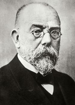 11 1843 for Koch hermann